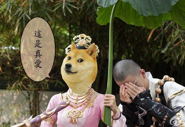 周六你与狗哥有个约会 《神烦狗2》预约开启