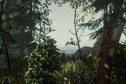 等我盖完房就去救儿子:写在《森林》正式发布前
